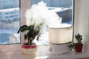 Are Air Purifiers and Humidifiers the Same Thing
